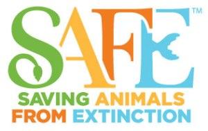 SAFE_logo_web