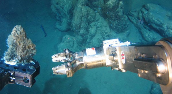 Striking a balance: deep sea mining and ecosystem protection