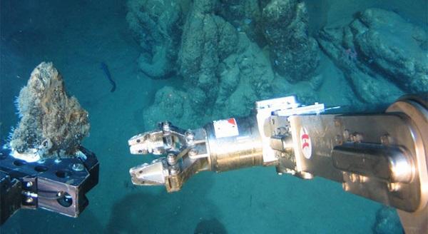 Striking a balance: deep sea mining and ecosystemprotection