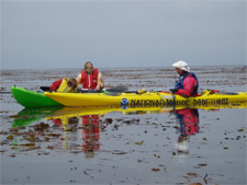 Team OCEAN volunteers venture out in kayaks as ambassadors and advocates for appropriate interactions with wildlife. Photo courtesy NOAA/Monterey Bay National Marine Sanctuary