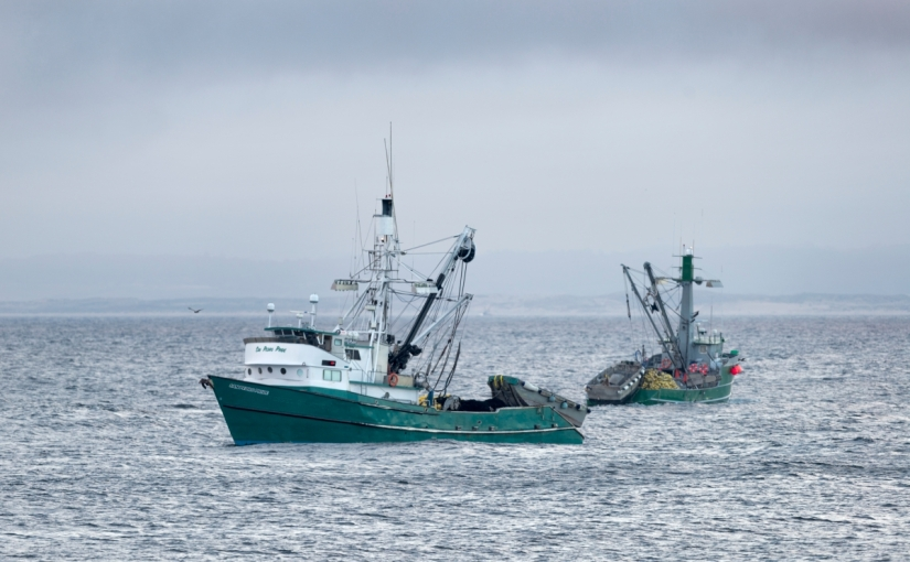 Administration advances efforts to fight pirate fishing and protect theocean