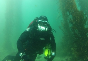 When divers use rebreathers, there's no tell-tale stream of bubbles to alert ocean animals to their presence. Photo courtesy George Z. Peterson.