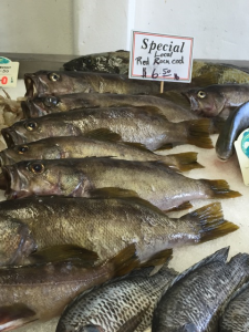 Locally caught rockfish and other groundfish will be available to Monterey area seafood lovers.