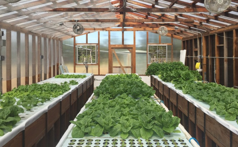 Closing the loop on foodproduction