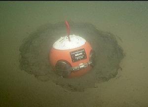 MBARI-detector in the sediment