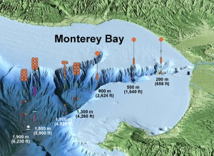 Illustration (not to scale) shows the locations of some of the instruments being placed within Monterey Canyon as part of the Coordinated Canyon Experiment. Image: Photo © 2015 MBARI