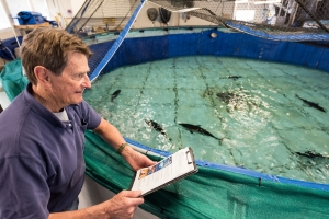 Chuck Farwell at the Tuna Research and Conservation Center. Photo ©Monterey Bay Aquarium, by Tyson V. Rininger
