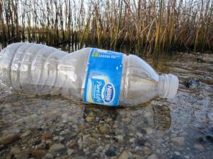 Bottle in water_FlickrCC_Kate Ter Haar