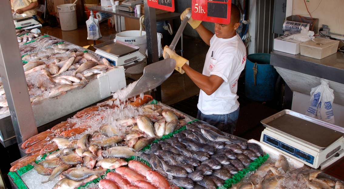 Seafood traceability: A different kind of fish tracking