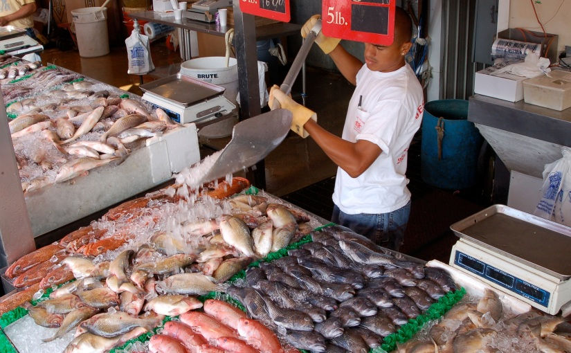 Seafood traceability: A different kind of fishtracking