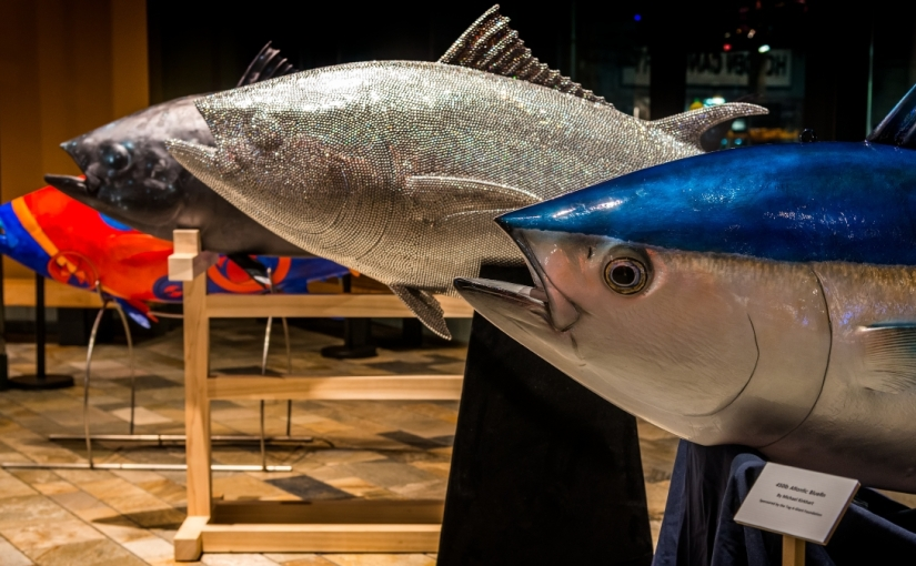 It takes a global village to conserve bluefintuna