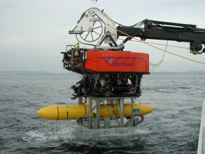 MBARI'S remotely operated vehicle Ventana is launched with a mapping autonomous underwater vehicle. Photo courtesy MBARI.