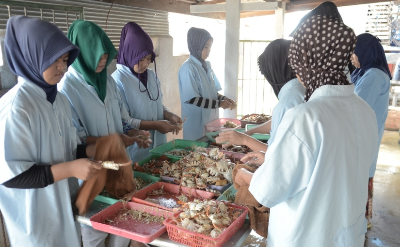 A global spotlight on sustainableseafood