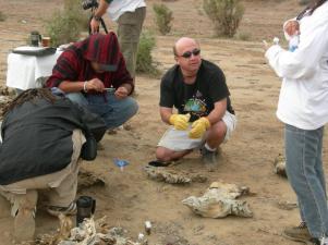 4-dr-sosa-shark-mummies-inspection