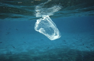 plastic-bag-in-water-us-dos