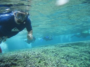 palumbi_reefs