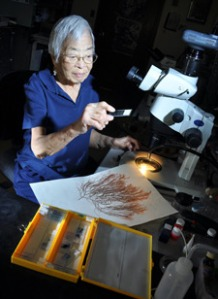 Isabella Abbott was a leader in the study of marine algae, in California and Hawaii. Photo courtesy University of Hawaii/Jennifer Crites