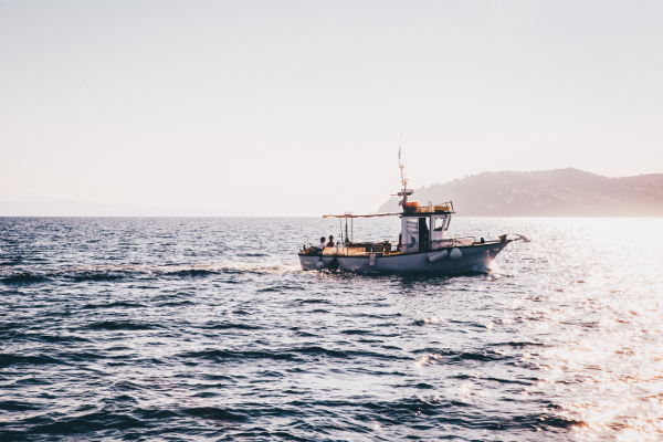 Sustainable local fisheries: the triple bottom line