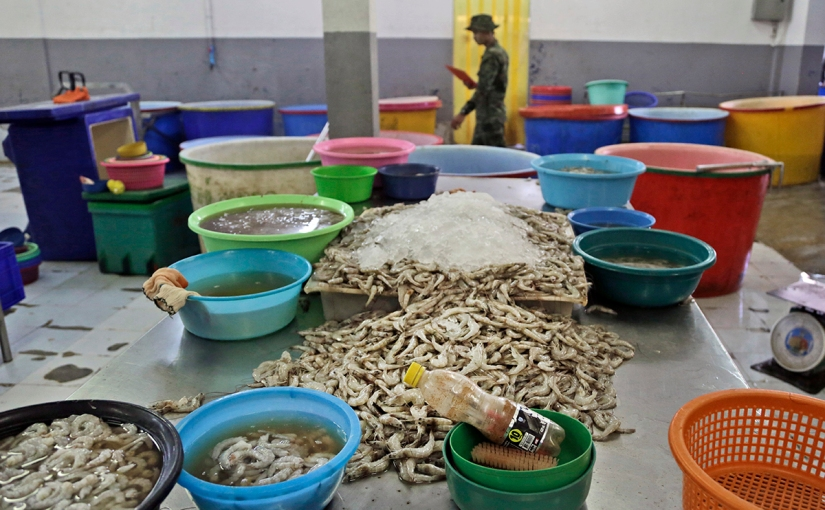 Julie Packard named 'American Food Hero' for tackling seafood sustainability andslavery