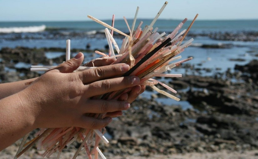 Students take the lead to fight ocean plasticpollution