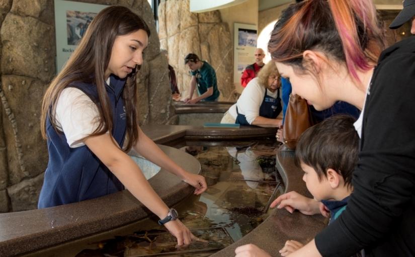 Oceans of possibilities for emerging teenleaders