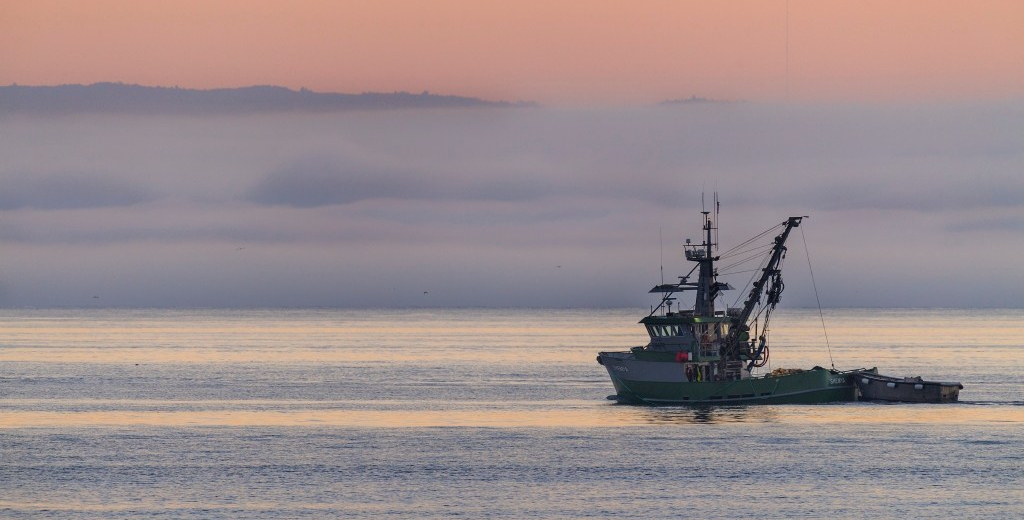 Action Alert: Keep U.S. seafood sustainable—speak out against H.R. 200