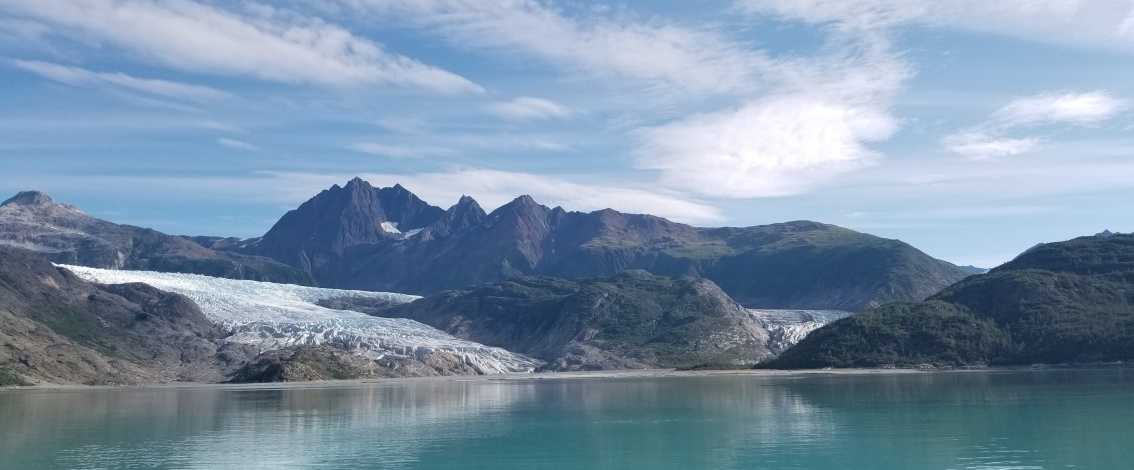 Diving into sea otter recovery in Alaska's Glacier Bay