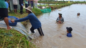 Vietnam-small-scale shrimp farm-1
