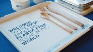 hifly-plastic free