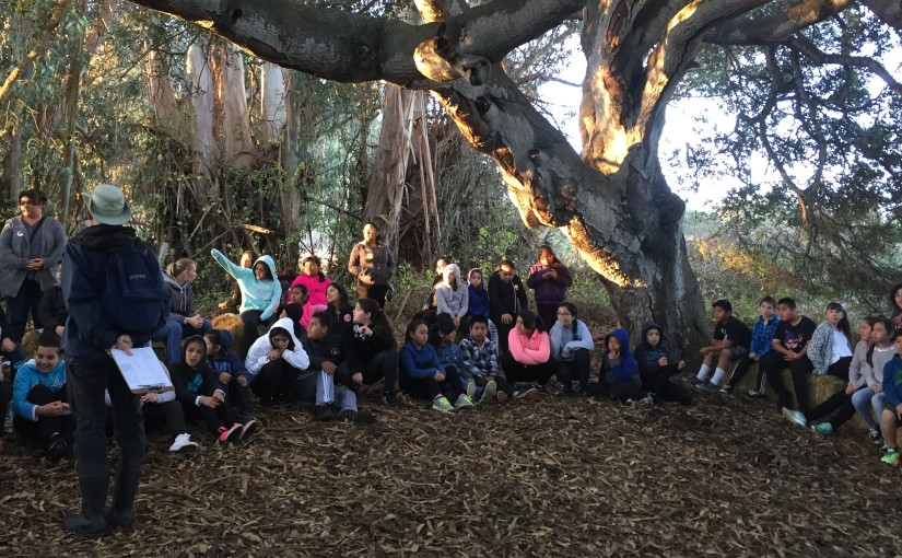 Environmental literacy: Learning the language of theland