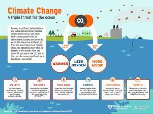 MBARI infographic