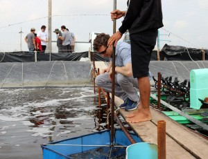 Josh Madeira examines farmed shrimp in Thailand - Photo by Mark Anderson